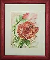rote Rosen; 28x35 cm