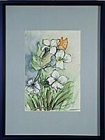Der Schmetterling; 17x25 cm