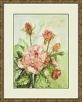 Rosen; 29x41 cm